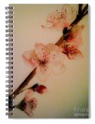 Flowers - Cherry Blossoms - Blooms Spiral Notebook