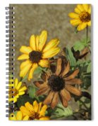 Flowers In Fall 1 Spiral Notebook