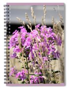 Flowers In The Grass 8891 Spiral Notebook