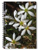 Flowers In The Pot Spiral Notebook