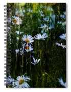 Flowers In The Rain - Daisies  Spiral Notebook