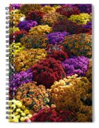 Flowers Near The Grand Palais Off Of Champ Elysees In Paris France   Spiral Notebook