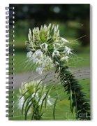 Flowers Pt. 1 Spiral Notebook