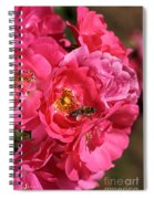 Flowers-roses-pink-bee Spiral Notebook