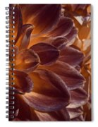 Flowers Should Also Turn Brown In Autumn Spiral Notebook