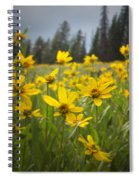 Flowers That Are Wild Spiral Notebook
