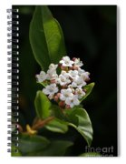Flowers-tiny White Spiral Notebook