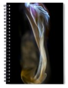 Flowing Forth Spiral Notebook