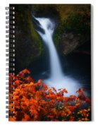 Flowing Into Fall Spiral Notebook