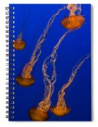 Flowing Pacific Sea Nettles 3 Spiral Notebook