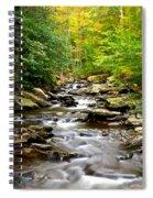 Flowing Stream Spiral Notebook