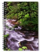 Flowing Through The Forest Spiral Notebook