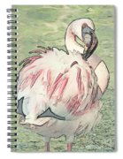 Fluffing Flamingo  Spiral Notebook
