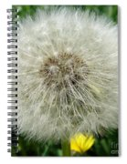 Fluffy Spiral Notebook