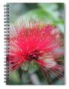 Fluffy Pink Flower Spiral Notebook