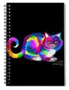 Fluffy Rainbow Cat 2 Spiral Notebook