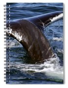 Fluke Shot 2 Spiral Notebook