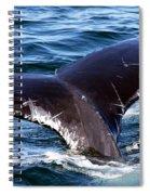 Fluke Shot 3 Spiral Notebook