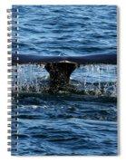 Fluke Shot Spiral Notebook