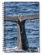 Flukes Of A Sperm Whale 2 Spiral Notebook