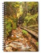 Flume Gorge Landscape Spiral Notebook