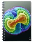 Fluorapatite Crystal Spiral Notebook