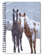 Flurries Spiral Notebook