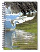 Flurry Spiral Notebook