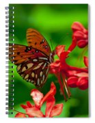 Fluttering Buttefly Spiral Notebook