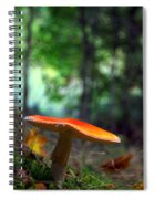 Fly Agaric Spiral Notebook
