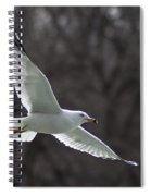 Fly Be Free Spiral Notebook