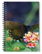 Fly By Spiral Notebook