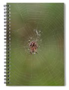 Fly Catcher Spiral Notebook