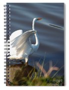 Fly Fly Away Spiral Notebook