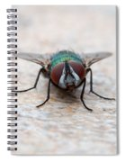 Fly Spiral Notebook
