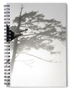 Fly Like An Eagle  Spiral Notebook