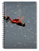 Fly United Spiral Notebook