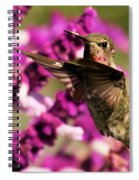 Flying At Attention Spiral Notebook