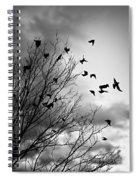 Flying Birds Spiral Notebook