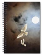 Flying By Moonlight Spiral Notebook