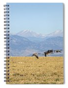 Flying Canadian Geese Rocky Mountains 2 Spiral Notebook