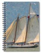 Flying Cloud Spiral Notebook