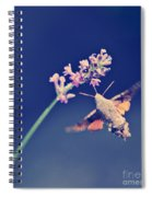 Flying Spiral Notebook