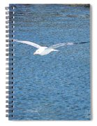 Flying Free Spiral Notebook