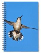 Flying Hummingbird Against Blue Sky Spiral Notebook