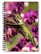 Flying In Lunch Spiral Notebook
