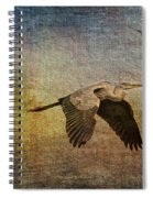 Flying Near The Moon Spiral Notebook