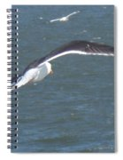 Flying On A Breeze Spiral Notebook