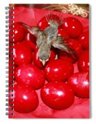 Flying Over Red Eggs Spiral Notebook