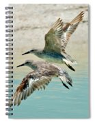 Flying Pipers Spiral Notebook